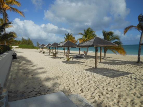 Coral Beach Hotel and Condos : beach