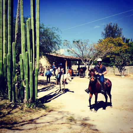 Horseback Mexico: At the end of our tour