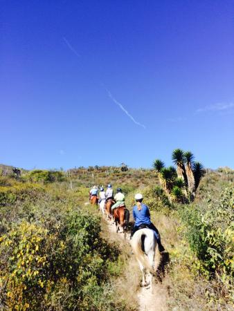 Horseback Mexico: Off we go!