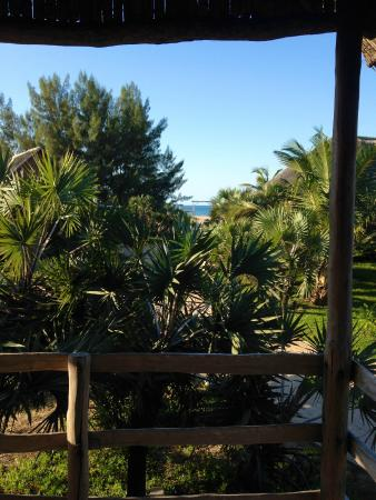 Bay View Lodge: View from our patio to the beach entrance. Such gorgeous weather we had