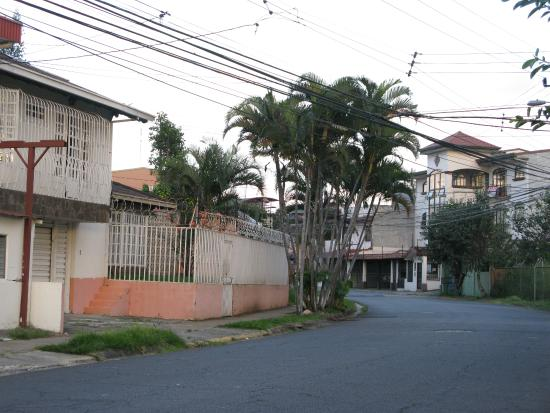 Taranova-Villas Palmas: The neighborhood