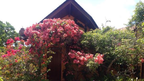 Pousada Mangabeiras : Cottage no. 6
