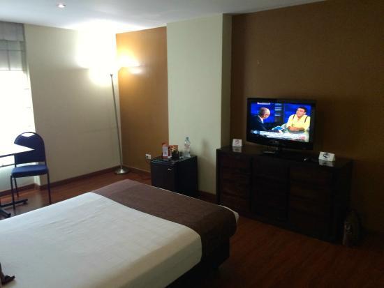Hotel Santa Barbara Real: flat tv