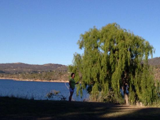 Lake Jindabyne: Lake view