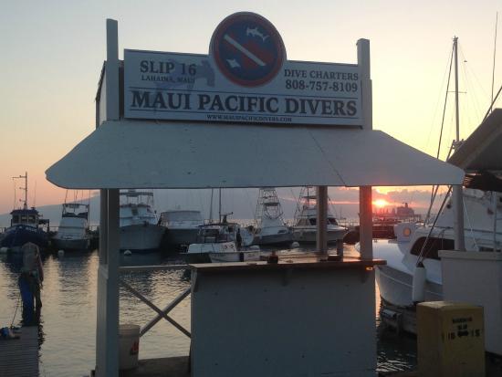 Maui Pacific Divers