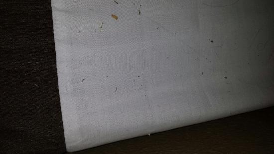 Comfort Inn & Suites Coralville : Matress pad next to pillow