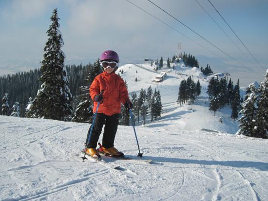 Monitor Ski