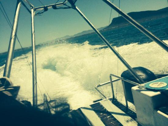 Gansbaai, Zuid-Afrika: From back of boat