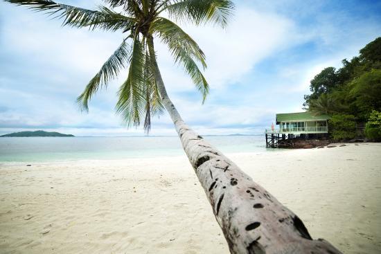 Rawa Island Review