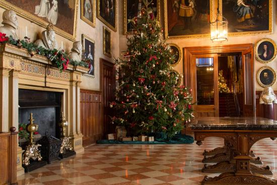 Charlecote Park: Great Hall Christmas tree 2014