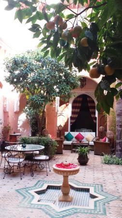 Riad Amina: Courtyard