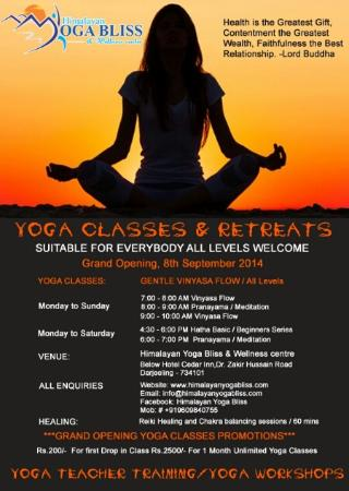 Himalayan Yoga Bliss Wellness Centre Promotional Poster For The Inaugaration