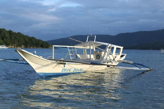 Dolphinbay Beachfront  & Dive Resort: Boat on the beach