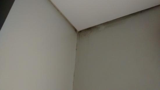 Casa Gaitan Cortes Boutique Hotel : mofo banheiro