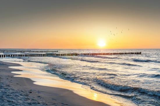 Precise Resort Rügen: nächster Strand ca. 10 Autominuten entfernt