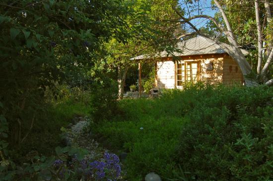 Los Vilos, Chile: Nuestras cabañas