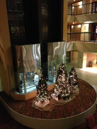 Hilton Stockton: Christmas decorations