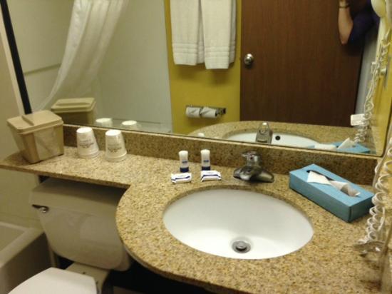 ميكروتيل إن باي ويندام كالسيوم: Double Queen Bed Bathroom