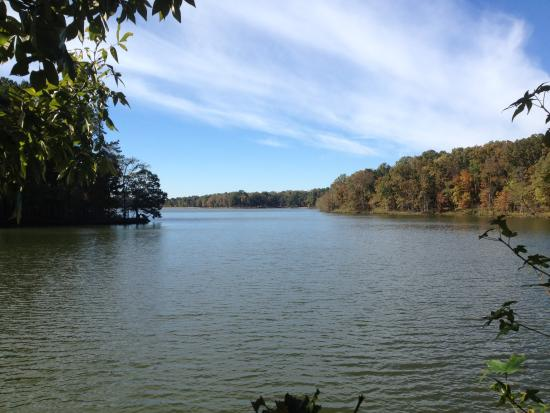 Collierville, TN: Nice day at the lake