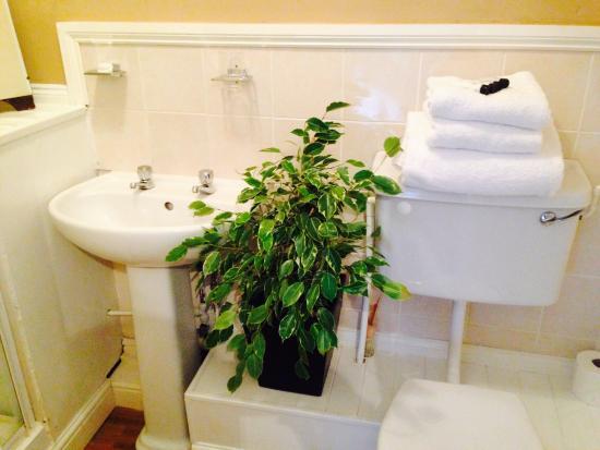 Cashmoor Inn : Bathroom