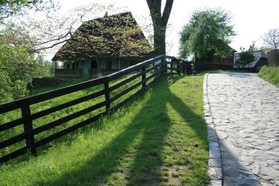 Subcarpathian Rus' Museum of Folk Architecture and Customs: folk museum