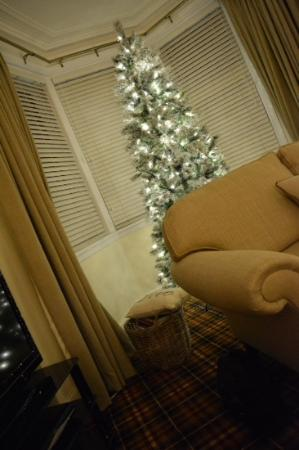 Clune House: Chirstmas Tree was a Lovely Surprise