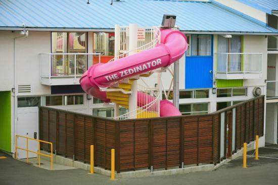 Hotel Zed: The Zedinator