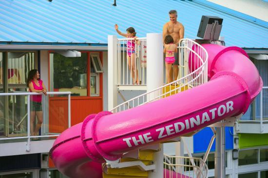 Hotel Zed: Waterslide