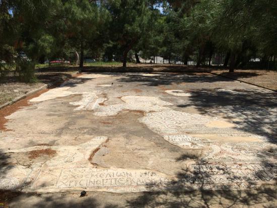 Archaeological Museum of Aegina: Museum of Aigina, mosaic floor  of Synagogue