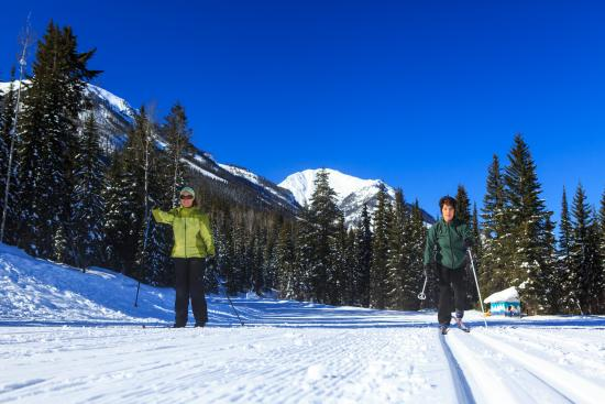 Golden, Canada: Have you tried the world class cross country skiing trails at Dawn Mountain Nordic Centre.