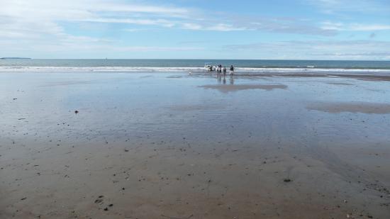 Pirate Cove: Arrivée pieds dans l'eau