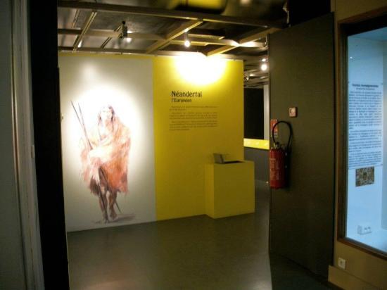 Musee d'Histoire Naturelle de Lille: Exposition l'homme de Néandertal