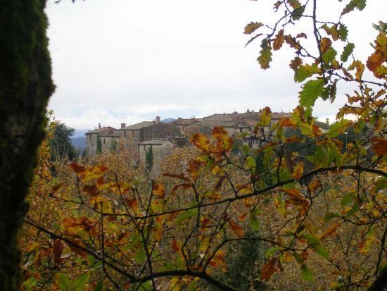 Locanda di Tocchi: Veduta del Castello di Tocchi