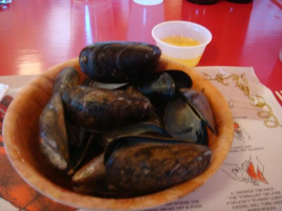 Tasty mussels picture of bar harbor lobster bakes bar for Food bar harbor