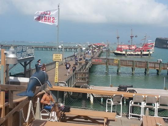 Back door view picture of pirate 39 s landing fishing pier for Port isabel fishing