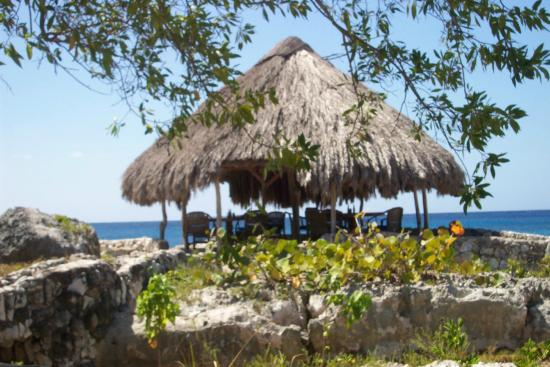 Coral Cove Resort: Day or Night dining ... Great fish off shore fun too.