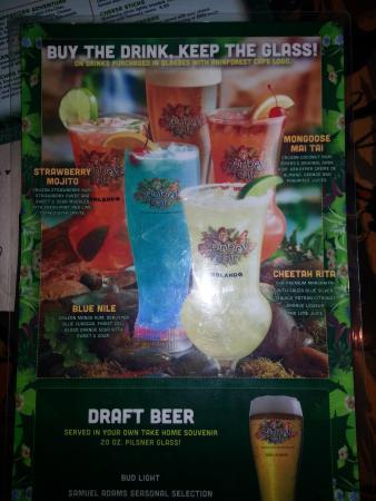 The Rainforest Cafe Drink Menu