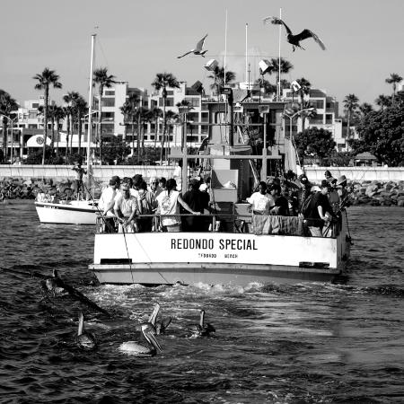 Fishing on the redondo special picture of redondo beach for Redondo sport fishing