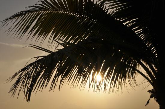 Del Sol Beachfront Hotel: amanecer desde la habitacion