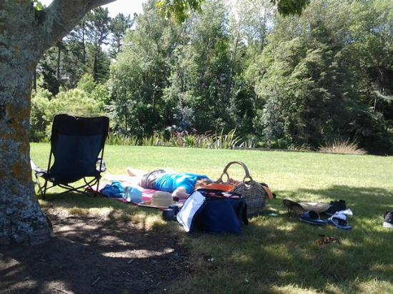 Bason Botanic Gardens : great place for a picnic and nap