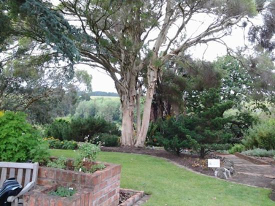 Bason Botanic Gardens: nice plantings