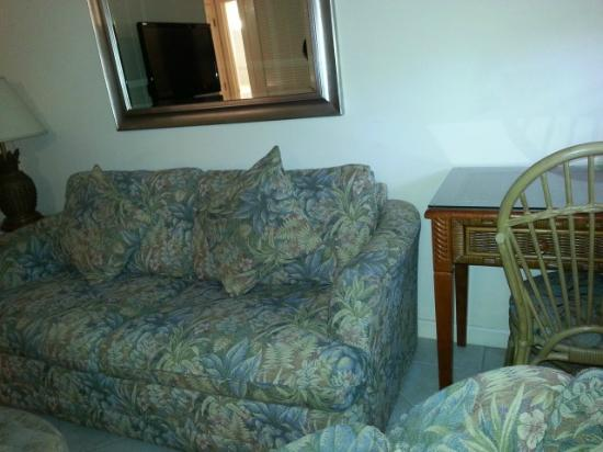 Hibiscus Suites - Sarasota / Siesta Key: Dirty dingy dated couch