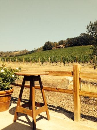 Joseph Phelps Vineyards: that's the permanent facility up the hill