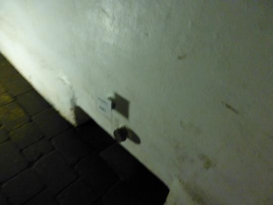 Bodega El Fabulista: これは大事な穴です