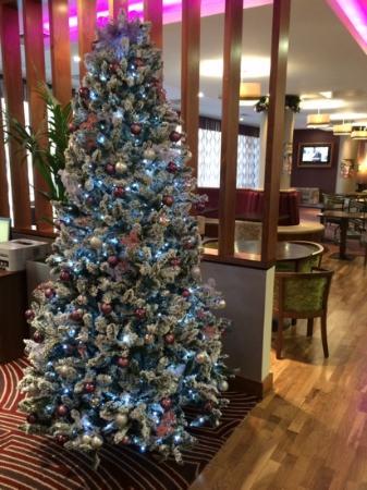 Jurys Inn Exeter: Christmas tree in lobby area