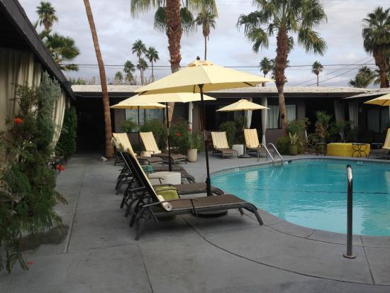 Avanti Hotel : Pool