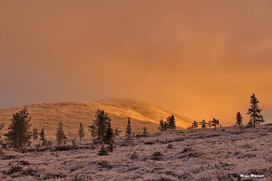 Pallastunturi Visitor Centre: The sun rises and creates beautiful colors.