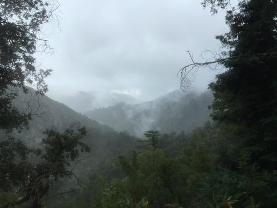 Big Sur Station: View of Twin Cones from Pine Ridge Trail