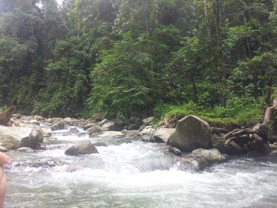 Utan Paradise Jungle Camp: the river