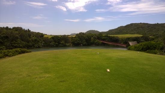 Fish River Sun Golf Course: Greens